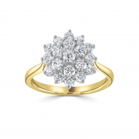18ct Yellow and Platinum Diamond Cluster Engagement Ring